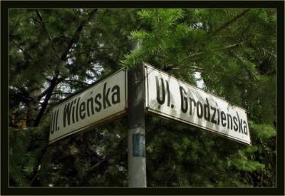 wilenska IMG_0237